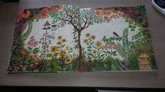 1000 Images About Livro De Colorir Para Adultos On