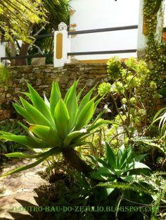 "Recanto do jardim da ""Casa Catita"", Algarve, Portugal."