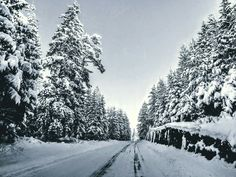 Long way home, winter, snow, road
