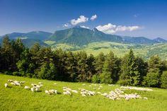 Mala Fatra National Park, Slovakia