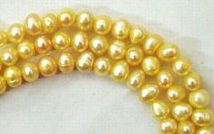 Pretty Morning Yellow Pearls