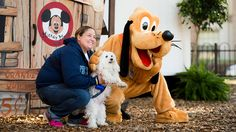 Walt Disney World Dogs Pack Shows Its Love of Paws