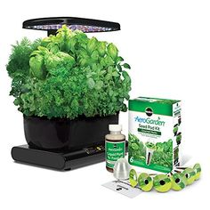 AeroGarden Harvest with Gourmet Herb Seed Pod Kit, Black: Miracle-Gro AeroGarden Harvest with Gourmet Herb Seed Pod Kit - Grow fresh herbs, vegetables, salad greens, flowers and more. Let your imagination grow wild! Chives Plant, Garlic Chives, Jardin Luxuriant, Growing Raspberries, Mint Plants, Herb Plants, Hydroponic Gardening, Herb Gardening, Gardening Tools