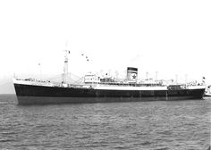 MV Empire Star, the third of the name. Originally being built by Harland & Wolf for Ministry of War Transport as Empire Mercia, this refigerated cargo ship was complete d as Empire Star for Frederick Leyland & Co(Blue Star's Managers) in December'46. 11,861 GWT, 7,027 NWT. 521ft Long. Powered by Two 8-Cyl. 2 S.C.D.A. Burmeister & Wain oil engines. Transferred to Lamport & Holt Line in '50. Scrapped in 71