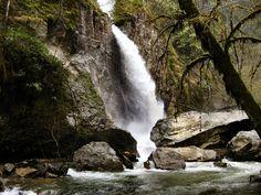 Drift Creek Falls, Oregon