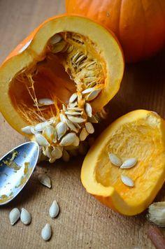 Pumpkin Pie smoothie | Scaling Back