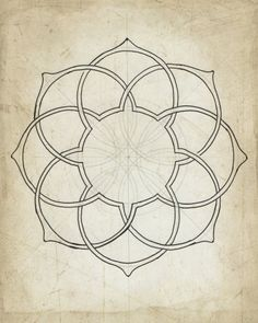 Geometric art illustration giclee art archival print beige tan wall art 'Geometry Sketch Eleven' - New Pin Geometric Drawing, Geometric Lines, Geometric Designs, Geometric Mandala, Islamic Art Pattern, Pattern Art, Pattern Design, Ink Illustrations, Art And Illustration