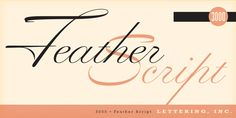 Feather Script - Webfont & Desktop font « MyFonts