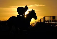 Winning Race Tips: 2:00 Lingfield Winning Race Tips (18th February) U...