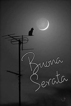 Buona serata Good Night Cards, Ely, Instagram, Events, Music, Illustration, Home Decor, Have A Good Night, Happenings