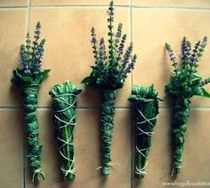 Smudging is a practice which involves the burning of herbs that are bundled, braided, or loose (for our purposes today we are taking about bundling, creating smudge sticks). But no matter if the herbs are. Make Your Own, Make It Yourself, Deco Nature, Spiritual Cleansing, Practical Magic, Smudge Sticks, Kitchen Witch, All Plants, Kraut