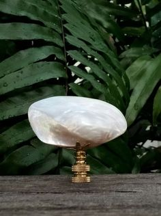 Sea Shell Lamp Finial, Large Pearl White Mussel, Brass Base, Table Floor Lamp, Beach Home Decor, Custom Handmade, White Lamp Finials, Ocean by VeroLampshades on Etsy