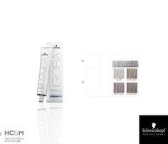 Schwarzkopf Professional IGORA ROYAL Absolutes Silverwhite Color Chart.