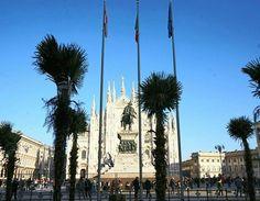 A tutti quanti ci chiedono se sia vero o meno: sì è vero. Han messo le palme in piazza Duomo. Foto di Gualberto Zonda Milano da Vedere