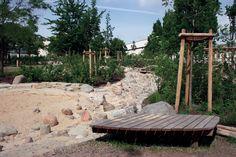 Nature Play, Berlin, Galilei-Grundschule   Dismal Garden