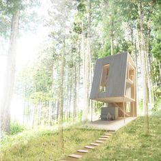 森との距離感をデザインする 緩い傾斜のある深い森の中で、斜面からのびるテラスが2回転して、森の中の空間をつつみこんでいるような別荘を計画しました。 森から中心に向かって回転する形態は、中心部分ほど森との距離は遠くなり、外側にいくほど親密になります。中心部分は内部としての部屋性が強く森から閉ざされた空間になり、外側は森に対して開いた半屋外の空間となっています。渦巻きの中心から外側に向かって、森との距離感がグラデーションとなって経験されます。渦巻きの隙間が人の移動する動線となり、また風や光が通る道ともなっています。小屋の中を歩きながら、風景としての森の見え方がダイナミックに変化していき、森の中を垂直に散歩するような体験ができます。 幾何学的な特性が小屋と森との関係を立体的で重層的にし、森の中で過ごすという体験をよりダイナミックにします。