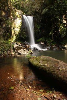 MY favourite place Curtis Falls at Tamborine Mountain Sth East Queensland Mt Tamborine, Tamborine Mountain, Tasmania, Australian Road Trip, Road Trip Destinations, Mothers Day Crafts, Romantic Getaways, Gold Coast, Places Ive Been