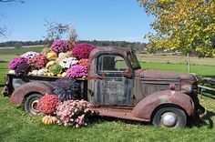 flower (truck) bed I want to do this in my back yard garden! I have to QUICK find a check old Truck! Patio Pergola, Backyard, Rustic Gardens, Outdoor Gardens, Flower Truck, Container Flowers, Old Trucks, Farm Trucks, Vintage Trucks