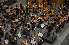 Riccardo Muti in concerto all'Opera di Firenze - 1 dicembre 2014 - Stagione 2014-15 ®Silvia Lelli