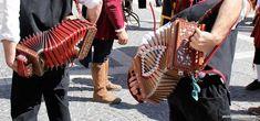 accordion player or concertina?