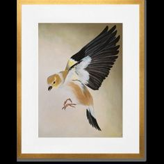 "GreenBox Art ""Flighted Finch"" by Ashley Dietrich Framed Painting Print in Brown Size: 15"" H x 13"" W x 0.5"" D"