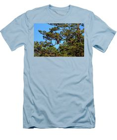 American Bald Eagle Men's T-Shirt (Athletic Fit) featuring the photograph American Bald Eagle by Cynthia Guinn