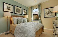 lighter blue accent wall and lighter beige walls