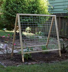 Garden trellis for beans and peas. Folds away after the season!
