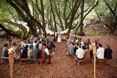 gorgeous ceremony under the trees! Love the benches for the ceremony seating!