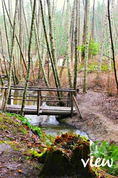 Top Bridge Trails - one of the many hidden gems of Vancouver Island Places To Travel, Places To Visit, Suspension Bridge, Vancouver Island, Canada Travel, British Columbia, Trail, Gems, Camping Stuff