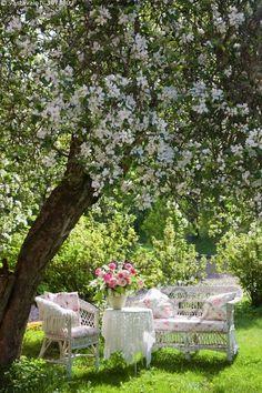 Idylli - idylli puutarha marjapensas marjapesaat omenapuu kukkakimppu korikalusteet korituoli valkoiset
