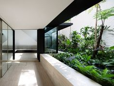 Beautiful view of a small garden from the verandah | Armadillo House by Formwerkz architects, Singapore