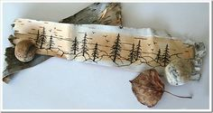 pines on birch bark
