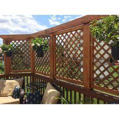 Backyard Privacy Screen, Outdoor Privacy, Backyard Pergola, Pergola Kits, Privacy Ideas For Deck, Patio Ideas, Privacy Trellis, Outdoor Balcony, Decks With Privacy Walls