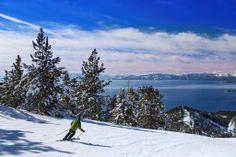 Skiing in Paradise! Lake Tahoe Resorts, Florida Resorts, Disney Resorts, Regency Hotel, Incline Village, Grand Lodge, Pet Resort, Pet Friendly Hotels, Dog Travel