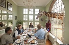 And some hotels brag that they have hot tubs! Dine with the endangered Rothschild giraffe at Giraffe Manor in Nairobi, Kenya!