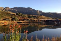 Mountain Pass, Table Mountain, Kwazulu Natal, Africa Travel, Resort Spa, South Africa, Beautiful Places, Surfing, African