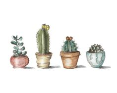 Potted Cactus Sketch and Watercolor 8x10 Print by TaylorTown, $10.00