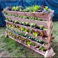 Cultivar el Huerto Casero.: La huerta en casa. Space Saver, Veg Garden, Gutter Garden, Vegetable Gardening, Vegetable Garden Planner, Garden Planters, Edible Garden, Garden Beds, Garden Farm