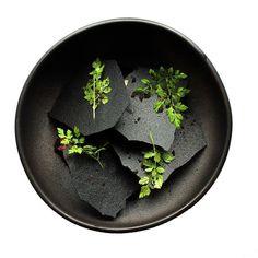 Modernist Cuisine, Food Obsession, Food Is Fuel, Molecular Gastronomy, Wrap, Plated Desserts, Food Presentation, Food Plating, Food Design