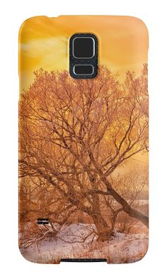 """Frosty sunset"" Samsung Galaxy Cases & Skins by floraaplus 