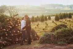 Pine Valley Christmas Tree Farm Photo Shoot