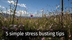 When stress is building and time is short, take five minutes out to do one of these simple stress-busters.