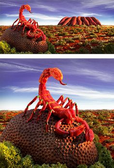 Foodscapes – Photography by Carl Warner - scorpion