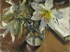 Paul Rafferty   Lily Study