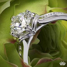 This Diamond Engagement Ring is from the Ritani Modern Collection.