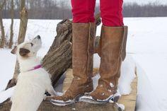 Olathe cowboy boots & a cute little dog