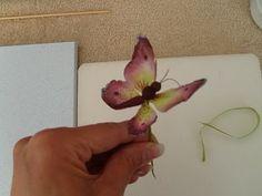 Mireille's Sugar Flowers: Alan Dunn Butterfly