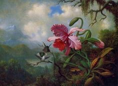 Orquídeas e beija-flor artista Keli Righetti