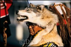 A new wesite featuring photographs of Native American Indians by David Neel, Kwakiutl  http://nativephotographs.com/